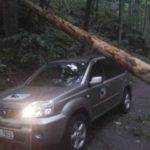 Auto stráže přírody pod spadlým stromem. Archiv R. Mezery.