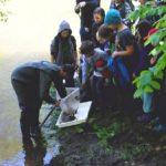 Strážce Ondřej Mikulka ukazuje dětem úlovky bezobratlých živočichů z řeky. Foto: archiv O. Mikulky