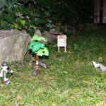 Strážce Jirka sleduje vlky a bobry